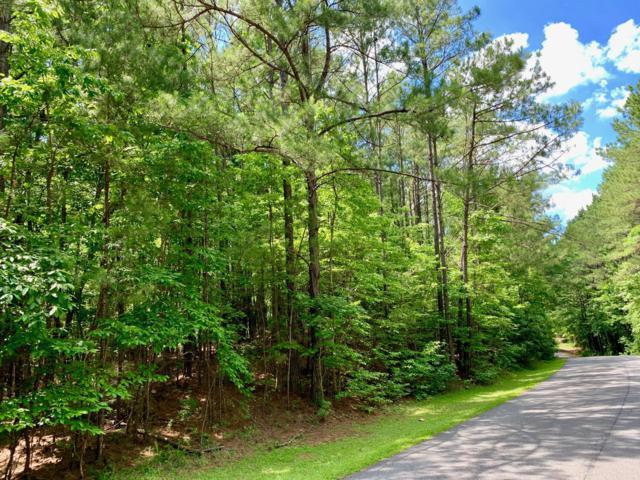 Lot 43 Willow Way North, Alexander City, AL 35010 (MLS #19-770) :: Ludlum Real Estate