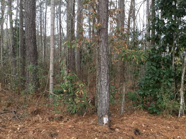 Lot 33 Althea Loop, Alexander City, AL 35010 (MLS #19-80) :: The Mitchell Team