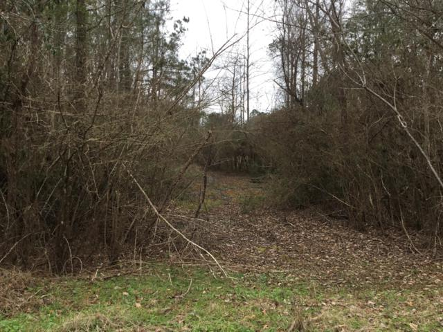 Lot 34 Althea Loop, Alexander City, AL 35010 (MLS #19-83) :: The Mitchell Team