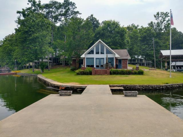 131 S Lands End Rd, Eclectic, AL 36024 (MLS #19-869) :: Ludlum Real Estate