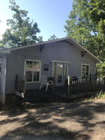 120 Wolf Ln, Dadeville, AL 36853 (MLS #19-920) :: Ludlum Real Estate