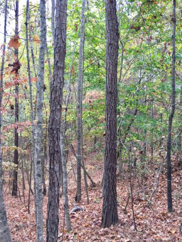 Lot 7 Turtleneck Rd, Alexander City, AL 35010 (MLS #19-961) :: The Mitchell Team
