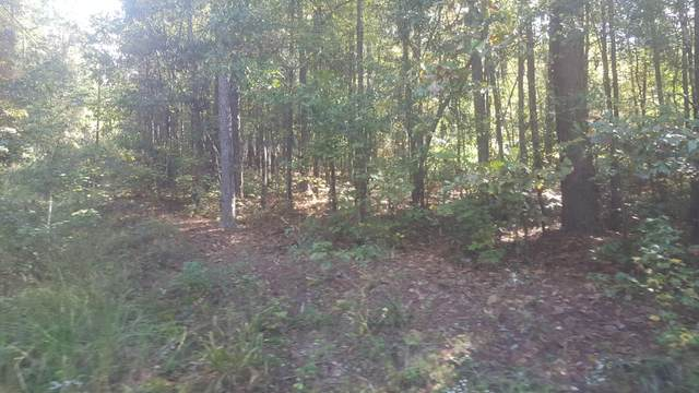 Chinquapin Pass, Dadeville, AL 36853 (MLS #20-1284) :: The Mitchell Team