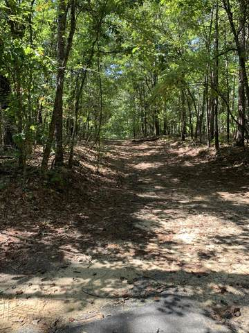 Lot 44 Long Leaf Terr, Dadeville, AL 36853 (MLS #20-1410) :: The Mitchell Team
