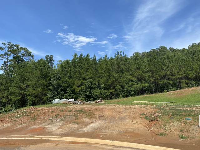 160 Hideaway Dr, Dadeville, AL 36853 (MLS #20-745) :: The Mitchell Team