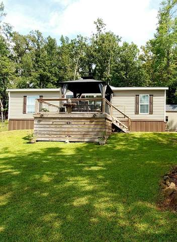 313 Lakeview Dr, Dadeville, AL 36853 (MLS #21-1135) :: Three Sixty {real estate}