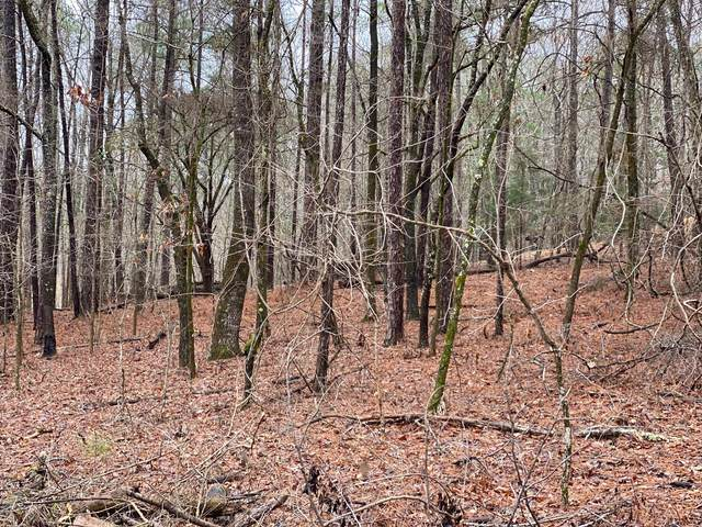 Lot A, Dadeville, AL 36853 (MLS #21-244) :: The Mitchell Team