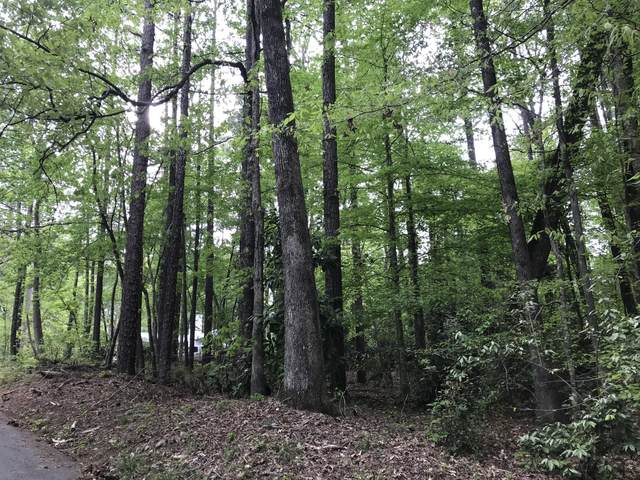 Lot 107 Hickory Way, Dadeville, AL 36853 (MLS #21-493) :: The Mitchell Team