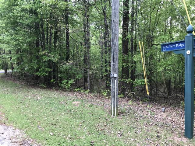 Lot 10 S Fern Ridge Crt, Dadeville, AL 36853 (MLS #21-500) :: The Mitchell Team