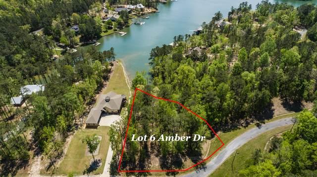 Lot 6 Amber Drive, Jacksons Gap, AL 36861 (MLS #21-560) :: Real Estate Services Auburn & Opelika