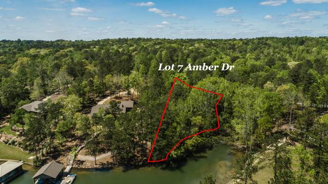 Lot 7 Amber Drive, Jacksons Gap, AL 36861 (MLS #21-561) :: The Mitchell Team