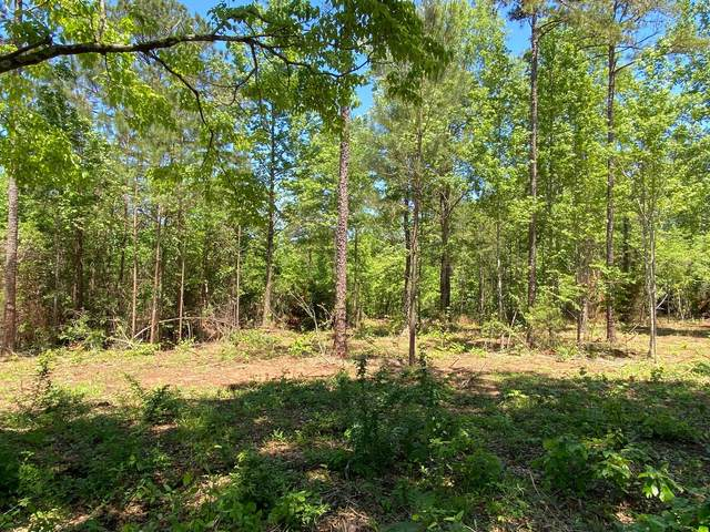 S Hy 49, Dadeville, AL 36853 (MLS #21-597) :: The Mitchell Team