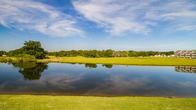 163 Waters View Dr, Pike Road, AL 36064 (MLS #21-733) :: The Mitchell Team