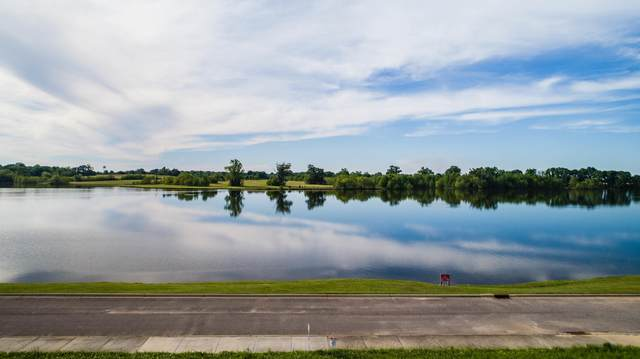 328 Lake Cameron Dr, Pike Road, AL 36064 (MLS #21-734) :: The Mitchell Team