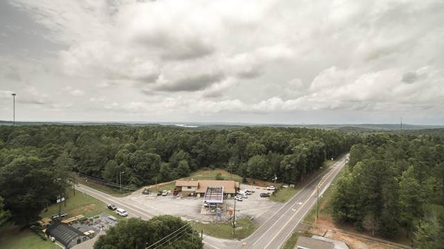 38 +/- Acres On Hwy. 49 South, Dadeville, AL 36853 (MLS #21-75) :: The Mitchell Team