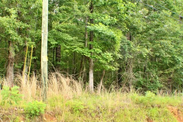 Lot 3 Lakeview Dr, Dadeville, AL 36853 (MLS #21-806) :: Real Estate Services Auburn & Opelika