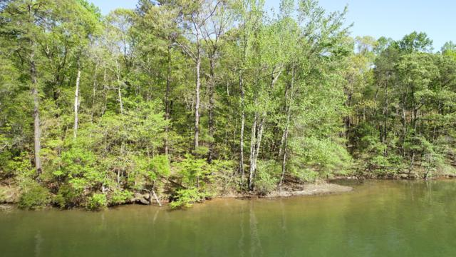 Lot 13 Kennebec, Dadeville, AL 36853 (MLS #18-708) :: The Mitchell Team