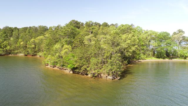 Lot 22 Kennebec, Dadeville, AL 36853 (MLS #18-717) :: The Mitchell Team