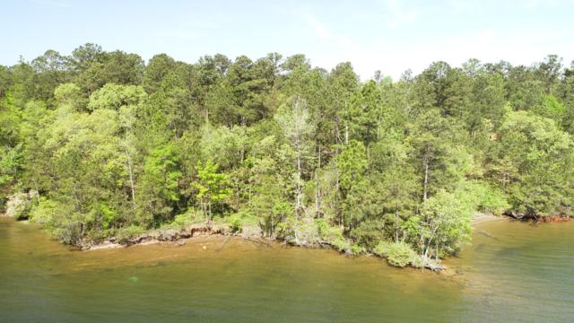 Lot 23 Kennebec, Dadeville, AL 36853 (MLS #18-718) :: The Mitchell Team