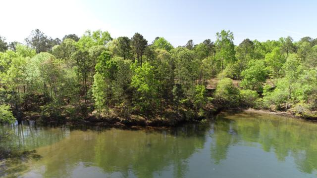 Lot 28 Kennebec, Dadeville, AL 36853 (MLS #18-723) :: The Mitchell Team