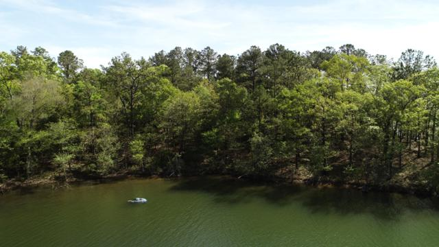 Lot 33 Kennebec, Dadeville, AL 36853 (MLS #18-728) :: The Mitchell Team