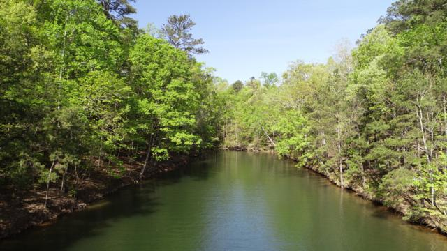 Lot 40 Kennebec, Dadeville, AL 36853 (MLS #18-735) :: The Mitchell Team