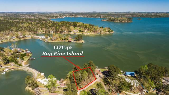 Bay Pine Island, Jacksons Gap, AL 36861 (MLS #20-1001) :: The Mitchell Team