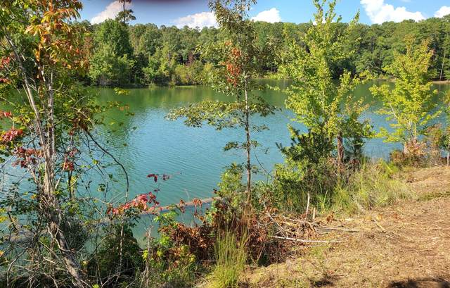 Lot 6 Lakewinds, Alexander City, AL 35010 (MLS #20-1110) :: The Mitchell Team