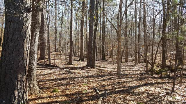 Lot 13 Myrtle Drive, Dadeville, AL 36853 (MLS #20-164) :: The Mitchell Team