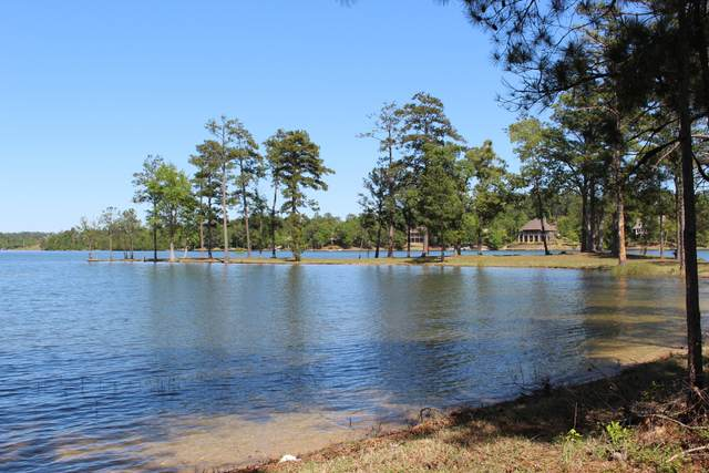 Lot 22D Fourwinds Rd, Alexander City, AL 35010 (MLS #20-485) :: The Mitchell Team