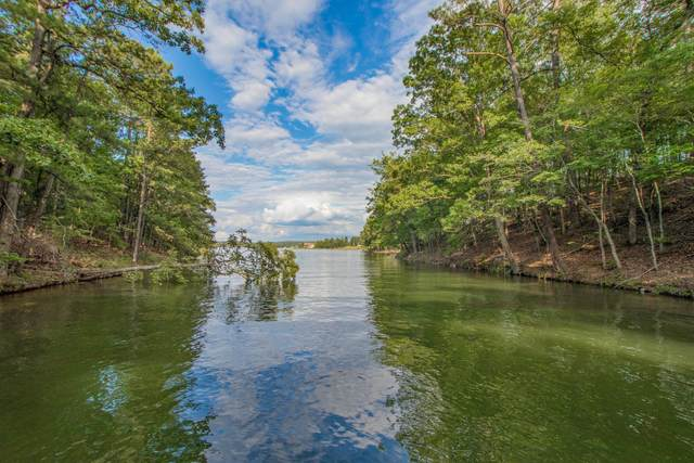 Lot 40 Kennebec, Dadeville, AL 36853 (MLS #20-768) :: The Mitchell Team