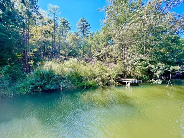 241 Pine Tree Cir, Dadeville, AL 36853 (MLS #21-1166) :: Three Sixty {real estate}