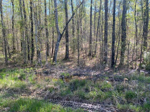 Holiday Shores Drive, Dadeville, AL 36853 (MLS #21-418) :: The Mitchell Team