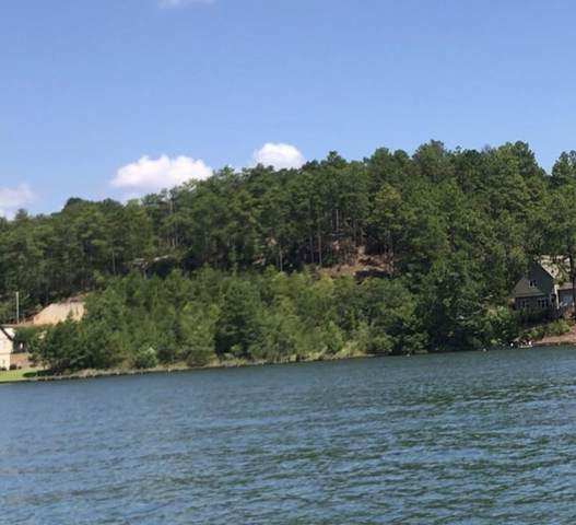Harbor View Blvd/ Lighthouse Crt, Dadeville, AL 36853 (MLS #20-895) :: Real Estate Services Auburn & Opelika