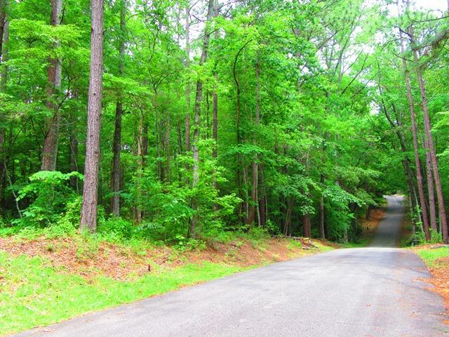 Lot 107 Hickory Way, Dadeville, AL 36853 (MLS #19-730) :: Ludlum Real Estate