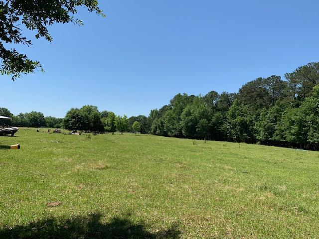 1640 Chana Creek Rd, Eclectic, AL 36024 (MLS #19-871) :: Ludlum Real Estate