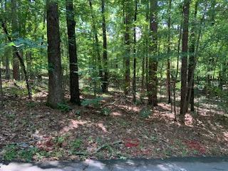 Lot 28 Bent Hickory, Dadeville, AL 36853 (MLS #19-963) :: Ludlum Real Estate