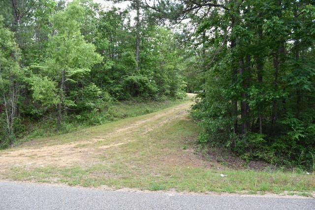 Union Rd, Eclectic, AL 36024 (MLS #20-786) :: The Mitchell Team