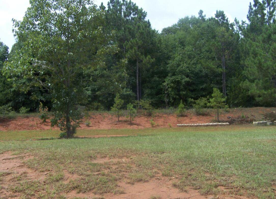 Lot 4 Landing Ln And 11 Acres - Photo 1