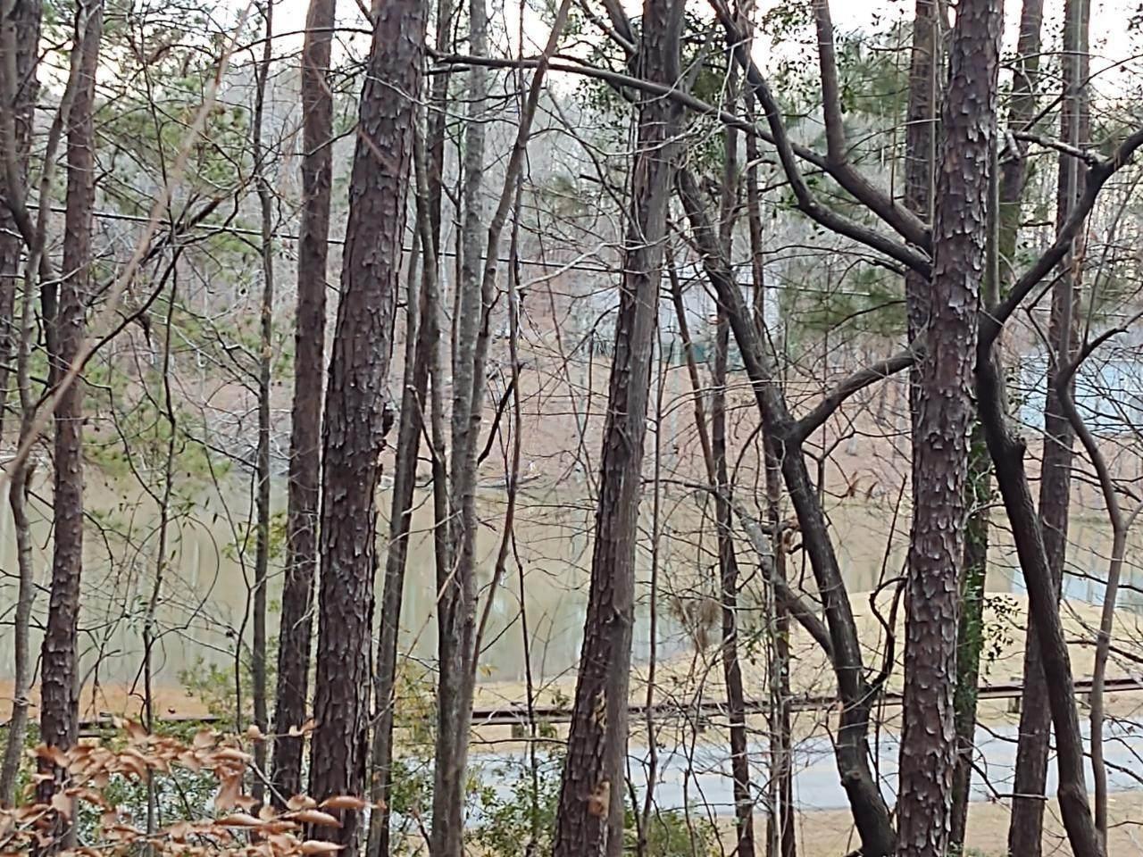 Lot 37 Fern Ridge Crt - Photo 1