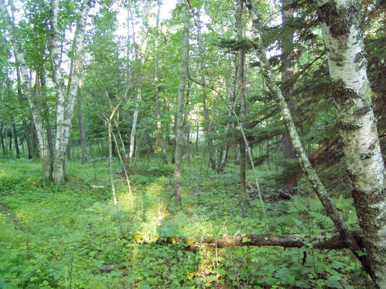 Lot 9 B-1 Falling Leaf Trail - Photo 1
