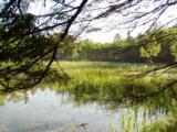 Lot 2 B-1 Falling Leaf Trail - Photo 1