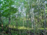 Lot 5 B-1 Falling Leaf Trail - Photo 3