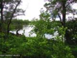 20 Acres Sybil Lake Road - Photo 41