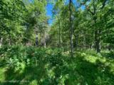 Tbd Crescent Ridge Trail - Photo 7