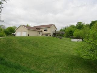 Address Not Published, Audubon, MN 56511 (MLS #85-729) :: Ryan Hanson Homes Team- Keller Williams Realty Professionals