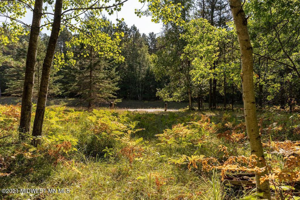 14304 County Road 36 - Photo 1