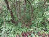 2.4 Acres Grazeland Drive - Photo 17