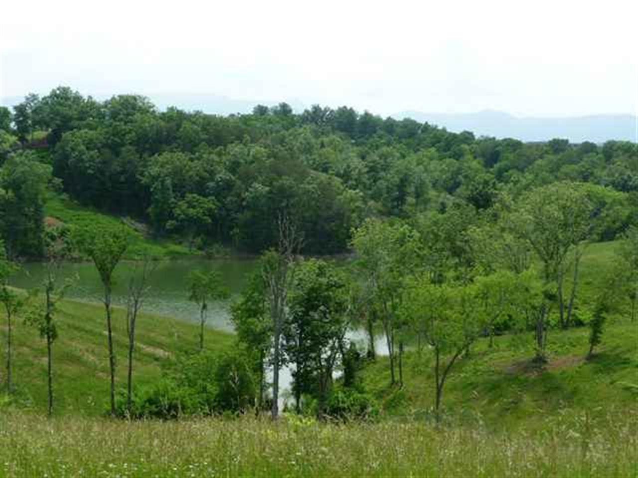 LOT 23- Mountain Lake Drive - Photo 1