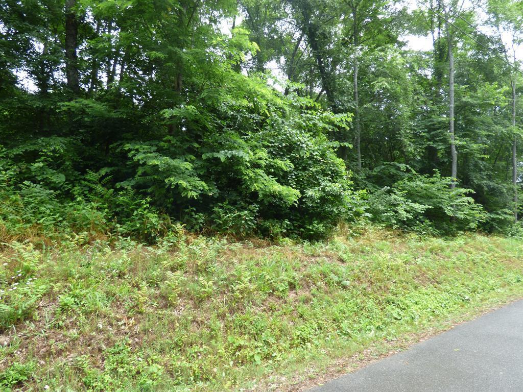 Lot 1134 Mountain View Lane - Photo 1